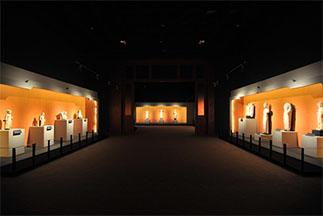 Museum Lighting Case